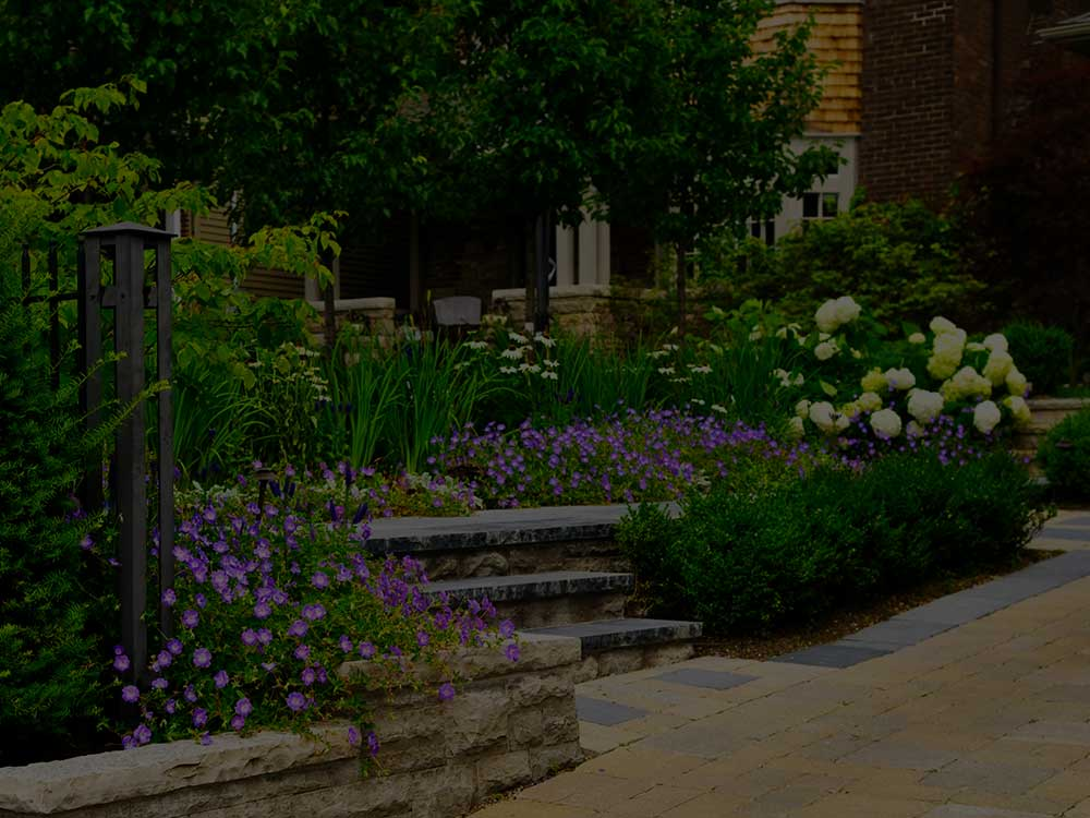 Washington, DC  Commercial Garden Design