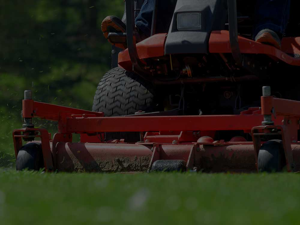 Washington, DC Commercial Lawn Mowing