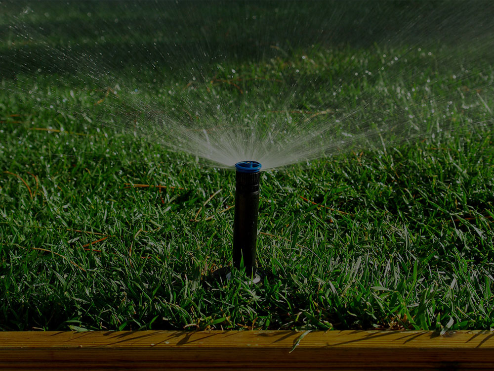 Washington, DC Metro Area Irrigation
