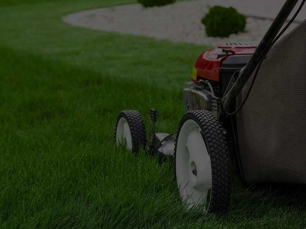 Washington, DC Lawn Mowing