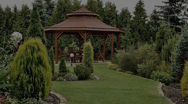 Washington, DC  Garden Design