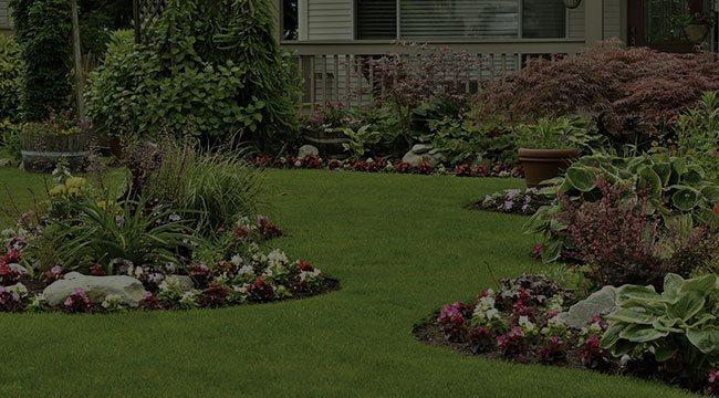 Pictures of Landscape Services Washington Dc - Landscape Services: Landscape Services Washington Dc